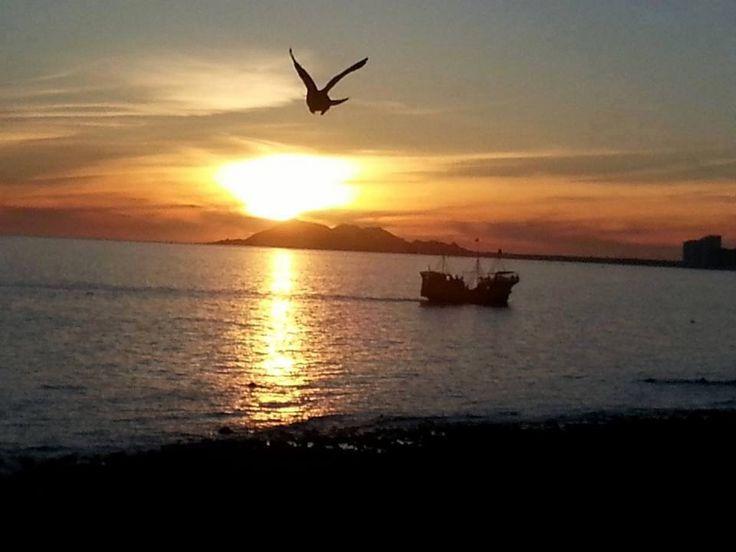Boating Puerto Penasco - SiPenasco Your Tour Provider