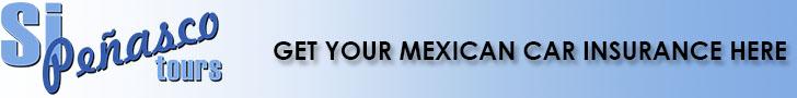 mexican car insurance banner