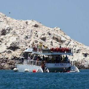 Boating Puerto Penasco - Bird Island